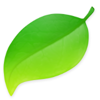 The Coda app icon - a green leaf